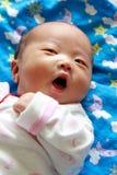 Pasgeboren babymeisje royalty-vrije stock fotografie