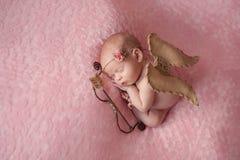 Pasgeboren Babymeisje die Cupidovleugels dragen Stock Fotografie