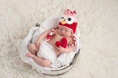 Pasgeboren Babymeisje die Owl Hat dragen Royalty-vrije Stock Foto