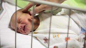 Pasgeboren babymeisje die terwijl haar papa probeert om haar, close-upschot te troosten schreeuwen stock footage