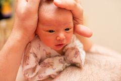 Pasgeboren babymeisje op de vadershanden Royalty-vrije Stock Afbeeldingen