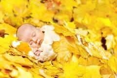 Pasgeboren de babyslaap van de herfst in esdoornbladeren. stock foto's