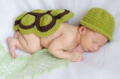 Pasgeboren in een schildpadkostuum Stock Afbeeldingen