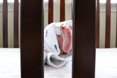 Pasgeboren Eerste Photoshoot Royalty-vrije Stock Foto
