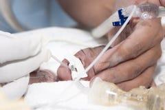 Pasgeboren en hand stock foto