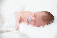 Pasgeboren gekrulde baby omhoog het slapen Royalty-vrije Stock Foto's