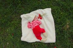 Pasgeboren meisje stock fotografie
