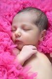 Pasgeboren meisje Royalty-vrije Stock Afbeeldingen