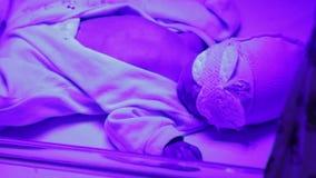 Pasgeboren onder de lamp stock videobeelden