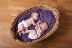 Pasgeboren tweelingen Stock Afbeelding