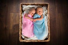 Pasgeboren tweelingen binnen de rieten mand Stock Fotografie