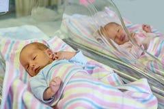 Pasgeboren tweelingenjongen en meisje in het ziekenhuis onder dekens stock afbeelding