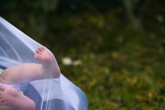 Pasgeboren voeten die een klamboe duwen royalty-vrije stock foto's