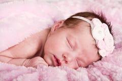 Pasgeboren zuigelingsslaap Stock Afbeelding