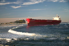 Pasha Bulker Royalty Free Stock Photo