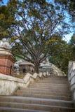 pashupatinath台阶  图库摄影
