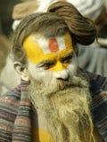 pashupatinath ναός shivaratri sadhu στοκ φωτογραφία με δικαίωμα ελεύθερης χρήσης