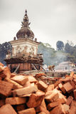 Pashupatinath-Affe Lizenzfreies Stockbild