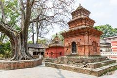 Pashupatinath hindus sacred place Stock Images