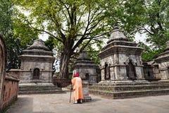Pashupatinath tempel Arkivfoto