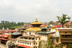Pashupatinath tempel Arkivfoton