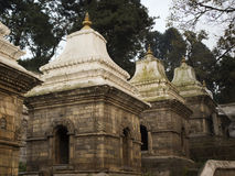 Pashupatinath tempelkomplex på den Bagmati floden i Katmandu Valle Royaltyfria Bilder