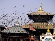 Pashupatinath Temple Stock Photography