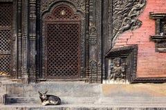 Pashupatinath temple entrance Stock Photos