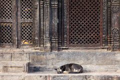 Pashupatinath temple entrance Stock Photo