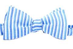 Pasiasty łęku krawat odizolowywający Fotografia Royalty Free
