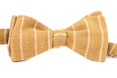 Pasiasty łęku krawat odizolowywający Zdjęcie Royalty Free