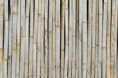 Pasiasty bambusa wzór na rząd tekstury tle Zdjęcie Stock