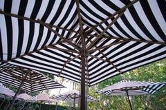 Pasiasty plażowy parasol w hotelu Zdjęcie Royalty Free