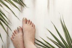 Pasiasty ziołowy palec u nogi gwoździa projekt Modny pedicure obrazy royalty free