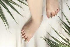 Pasiasty ziołowy palec u nogi gwoździa projekt Modny pedicure zdjęcia stock