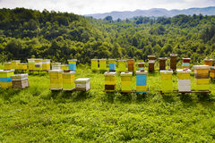 Pasika on the field. NLittle houses for bees in the field Stock Photography