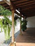 Pasillo Colonial Columnas Techo De Madera Helechos. Pasillo abierto techado con bambús y troncos de madera, las columnas también son en madera con corte stock photo