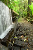 Pasillo con la pared del agua en el parque nacional Imagenes de archivo