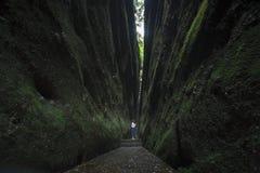 Pasillo de las grietas de las rocas Fotos de archivo