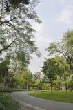 Pasillo del parque Imagenes de archivo