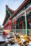 Pasillo tradicional de Pekín, China en invierno con el cielo azul de la nieve y del claro Fotografía de archivo libre de regalías