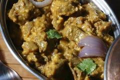Pasinde non en vegmaträtt från Hyderabad. arkivbilder