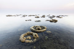 Pasir putih海滩, situbondo, Java,印度尼西亚 免版税图库摄影