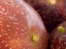 pasja owocowych zdjęcie royalty free
