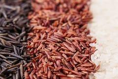 Paski czerwień, czarny i biały ryżowy zakończenie tła ryż tekstury uncooked myjący fotografia stock