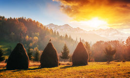 Pasmo górskie w Karpackich górach w jesień sezonie Zdjęcia Royalty Free