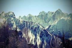 Pasmo górskie z śniegiem w zimie zdjęcia royalty free