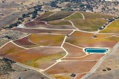 Paso罗夫莱斯从飞机观看的秋天葡萄园-惊人的秋天颜色 免版税库存图片
