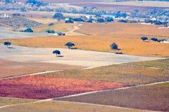 Paso罗夫莱斯从飞机观看的秋天葡萄园-惊人的秋天颜色 免版税库存照片