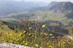 Paso asombroso Gumbashi en septiembre cerca de Elbrus Fotografía de archivo